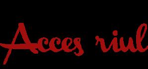logo2accesoriul
