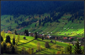 bucovina_by_troyager-d2zo8hb